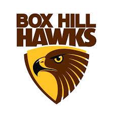 Box Hill Hawks (VFL)